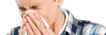 アレルギーを治療する7つの自然な方法