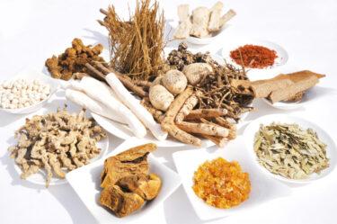 漢方薬(漢方薬、鍼灸)による低テストステロンの治療